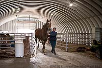 Metal Horse Stables